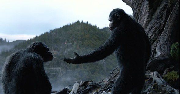 Dawn-of-the-Planet-of-the-Apes-6